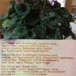 Seelsorgeraum von den Pfarren Stammersdorf, Strebersdorf, Cyrill und Method